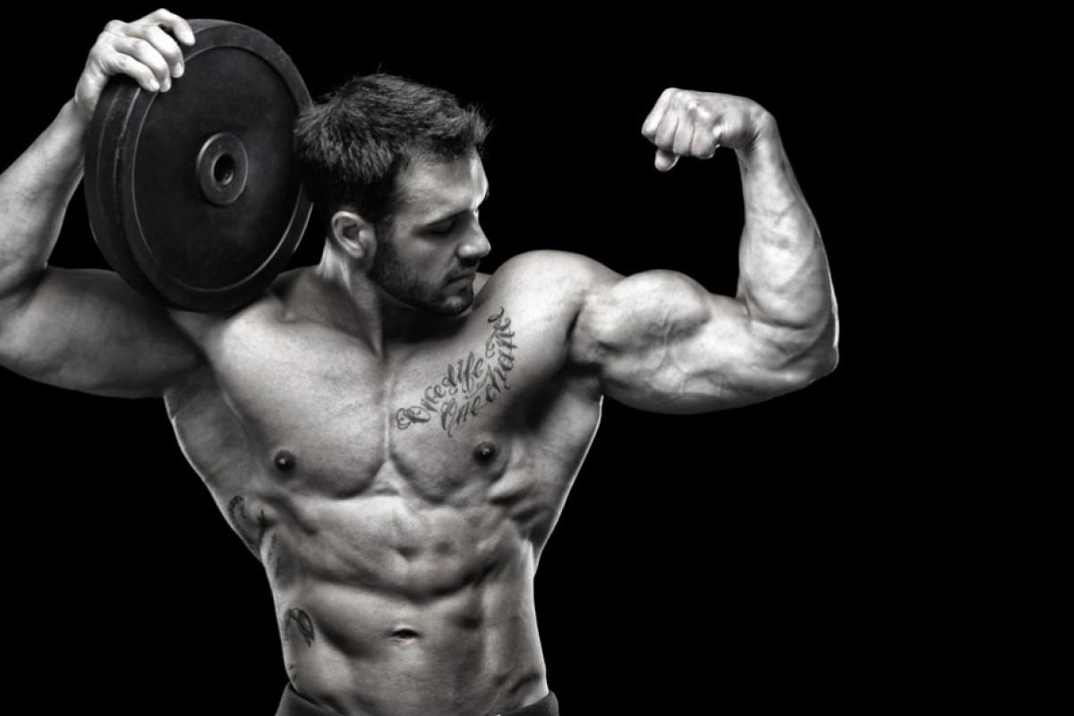 Гіперплазія – фактор росту м'язів.