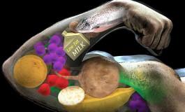 Речовини, необхідні для здоров'я і росту м'язів