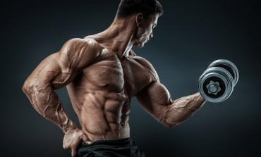 Ключеві питання про стероїди